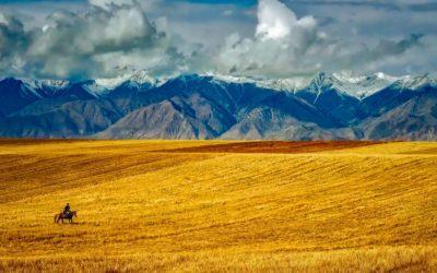 Wędrowiec i farmer cz.1. Samotność