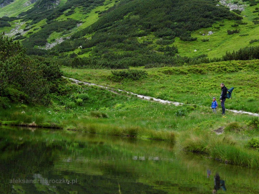 Tatry, w drodze na przełęcz Karb